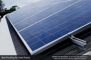 Bird proofing solutions for solar panels